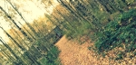 PicsArt_1384264662393
